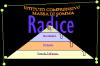I.C.RADICE MASSA DI SOMMA ESPERIMENTA