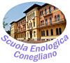 I.T.A. CONEGLIANO (S.C. I.S.CERLETTI)